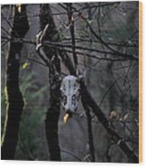 Antlers - Skull - In The Air Wood Print