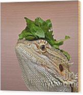 Anyone Seen My Salad? Wood Print