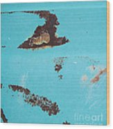 Ap13 Wood Print