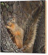 Apache Fox Squirrel Wood Print
