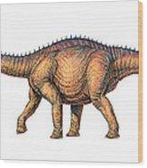 Apatosaurus Dinosaur Wood Print