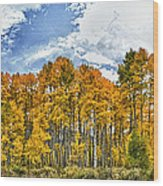 Apen Trees In Fall Wood Print