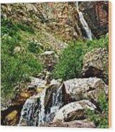 Apikuni Falls Wood Print