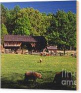 Appalachian Barn Yard Wood Print