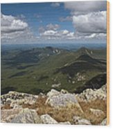Appalachian Trail View Wood Print