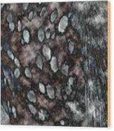 Appaloosa Horse Wood Print