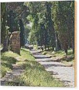 Appian Way In Rome Wood Print