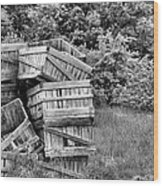 Apple Crate Bw Wood Print by JC Findley