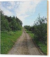 Apple Fields Wood Print