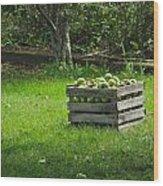 Apple Picking Wood Print