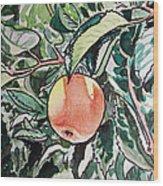 Apple Tree Sketchbook Project Down My Street Wood Print