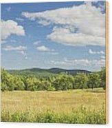 Apple Trees And Hay Field In Summer Maine Wood Print
