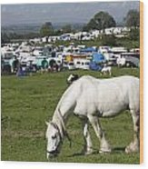 Appleby Horse Fair Wood Print