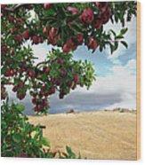 Applessence Wood Print