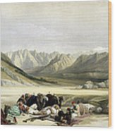 Approach To Mount Sinai Wady Barah Feby 17th 1839 Wood Print