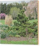 April Garden Wood Print