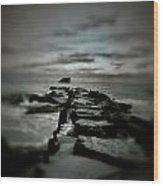 Aquatic Pathway Wood Print