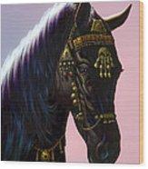Arab Horse Wood Print