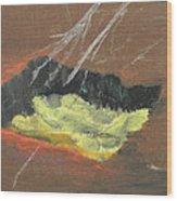 Arab Spring Six The Requiem  Wood Print