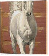 Arab Stallion Wood Print