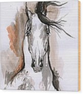 Arabian Horse Ink Drawing 2 Wood Print