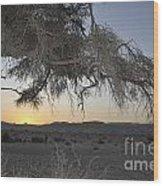 Aravah Desert Landscape  Wood Print