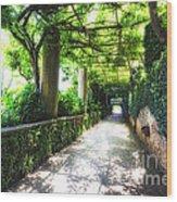 Arbor Path In Ravello Wood Print