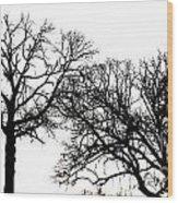 Arboreal Mind Meld Wood Print