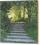 Arboretum Steps Wood Print