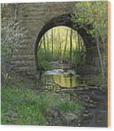 Arch In Spring 3 Wood Print
