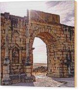 Arch Of Triumph Wood Print