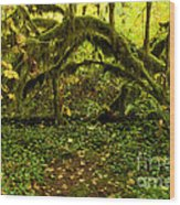 Arches In The Rainforest Wood Print
