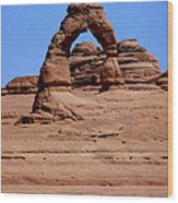 Arches Nationl Park IIi Wood Print