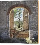 Archway At Pozos Wood Print