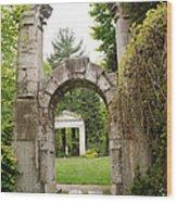 Archway Path Wood Print