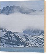 Arctic Panorama Wood Print