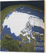 Arctic Sea Ice, 1979 Wood Print