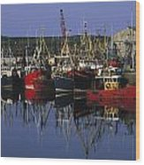 Ardglass, Co Down, Ireland Fishing Wood Print