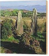 Ardgroom, Co Cork, Ireland Stone Circle Wood Print
