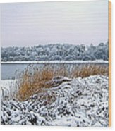 Ardingly Reservoir - Winter Snowy Scene Wood Print