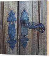 Argentinian Door Decor 1 Wood Print