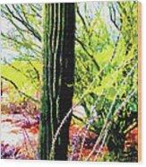 Arizona Catcus Wood Print