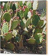 Arizona Prickly Pear Cactus Wood Print