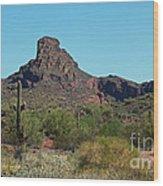Arizona Scenic Vi Wood Print