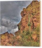 Arizona Where The Old Man Retired Wood Print