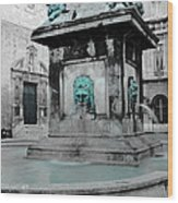 Arles Fountain With A Spot Of Color Wood Print