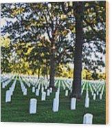 Arlington Cemetery Graves Wood Print