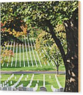 Arlington National Cemetery In The Fall  Wood Print