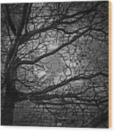 Arms Of The Night Wood Print