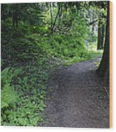Around Another Bend In The Trail On Mt Spokane Wood Print